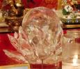 lotuscrystalweb