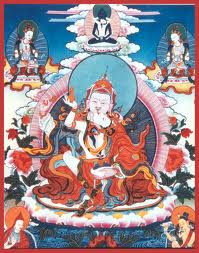 PadmasambhavaMandarava